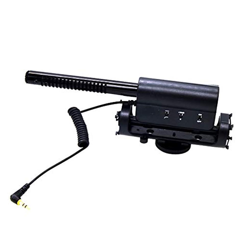 ロック冒険知らせるGRALARA D-598マイク 3.5mm入力ソケット 騒音低減 スタジオ/インタビュー適用
