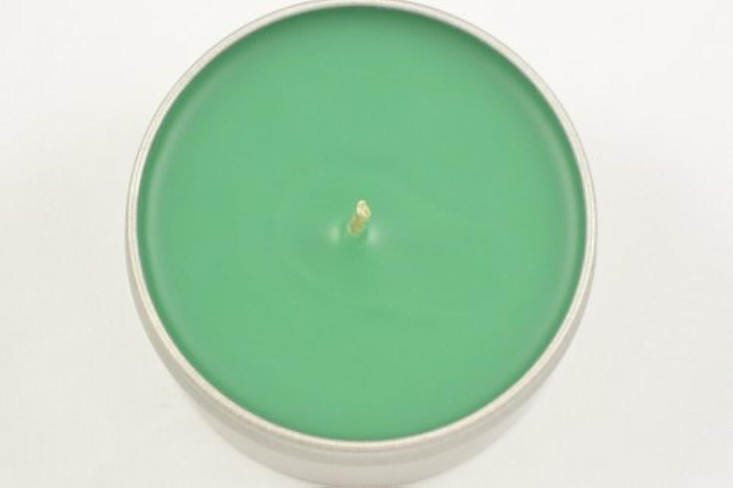 蒸音声学惨めな魅惑的なキャンドルセージ葉Scented Candle 8 oz