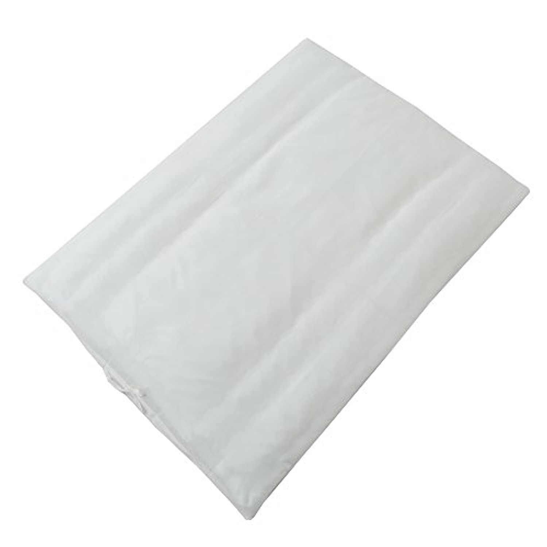 東京西川 毛布カバー 肌掛け布団カバー ベビー用 89X120cm 綿100% 日本製 無地 ホワイト LEM1309201-W