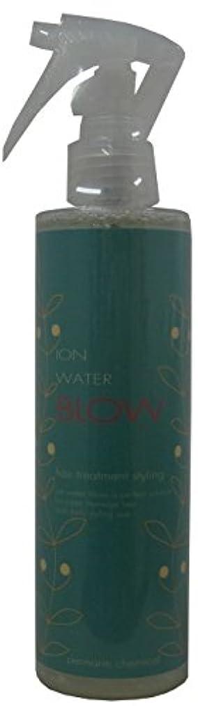 擁する急性湿気の多いイオンウォーター ブロー 200ml