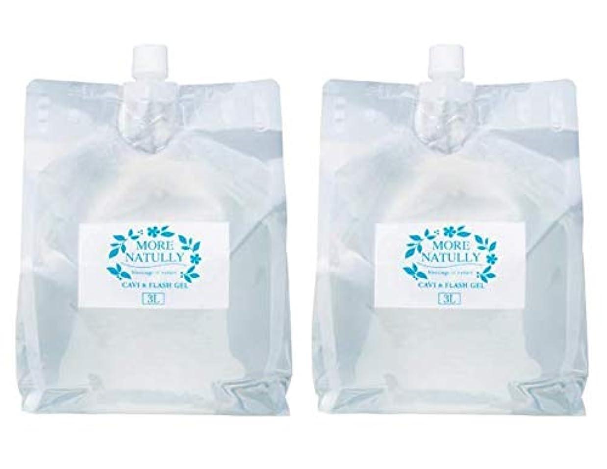 上回るアンビエント適性モアナチュリー キャビ&フラッシュジェル 【ソフト】3kg×2袋