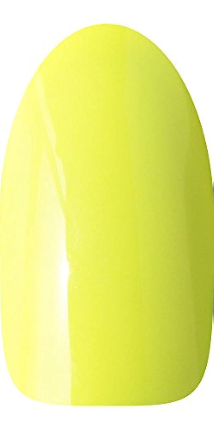 静脈物足りないモロニックsacra カラージェル No.099 蛍