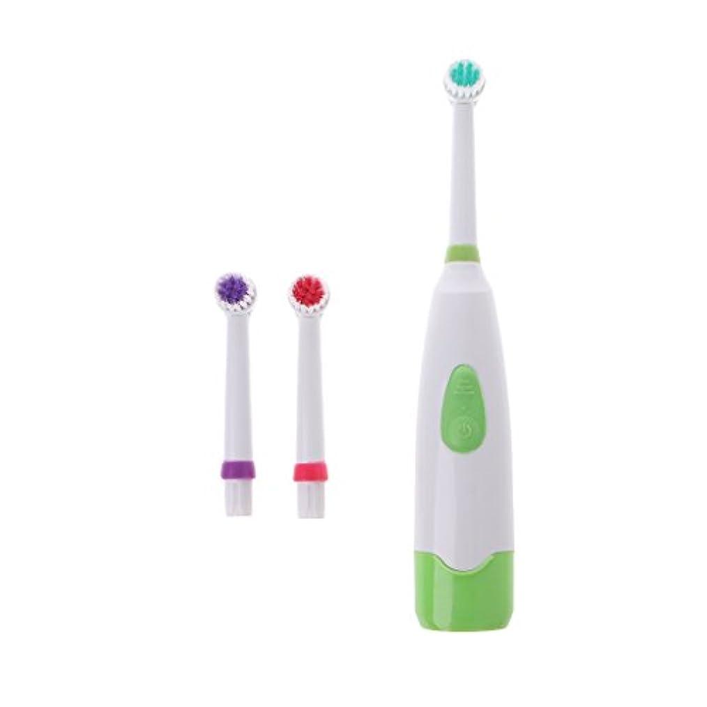 便利負言い聞かせるManyao 3ブラシヘッドで防水回転電動歯ブラシ (緑)