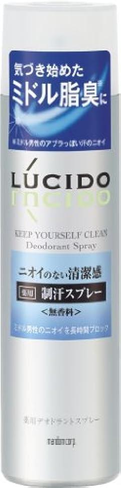 受け入れ憂鬱な沼地LUCIDO (ルシード) 薬用デオドラントスプレー (医薬部外品) 150g