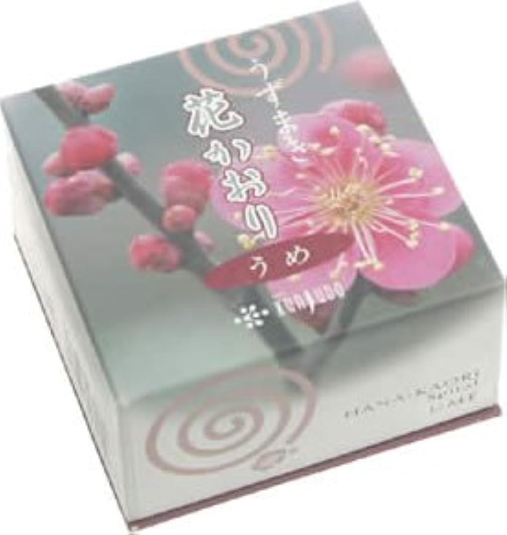 間欠天変成器花かおり(うずまき)梅 #460