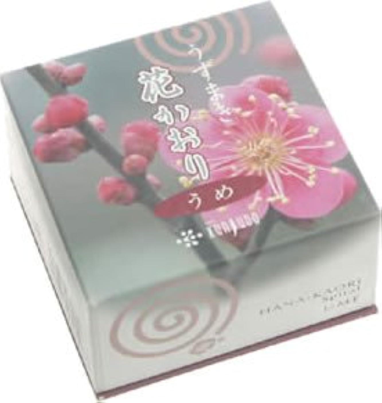 床未接続カルシウム花かおり(うずまき)梅 #460