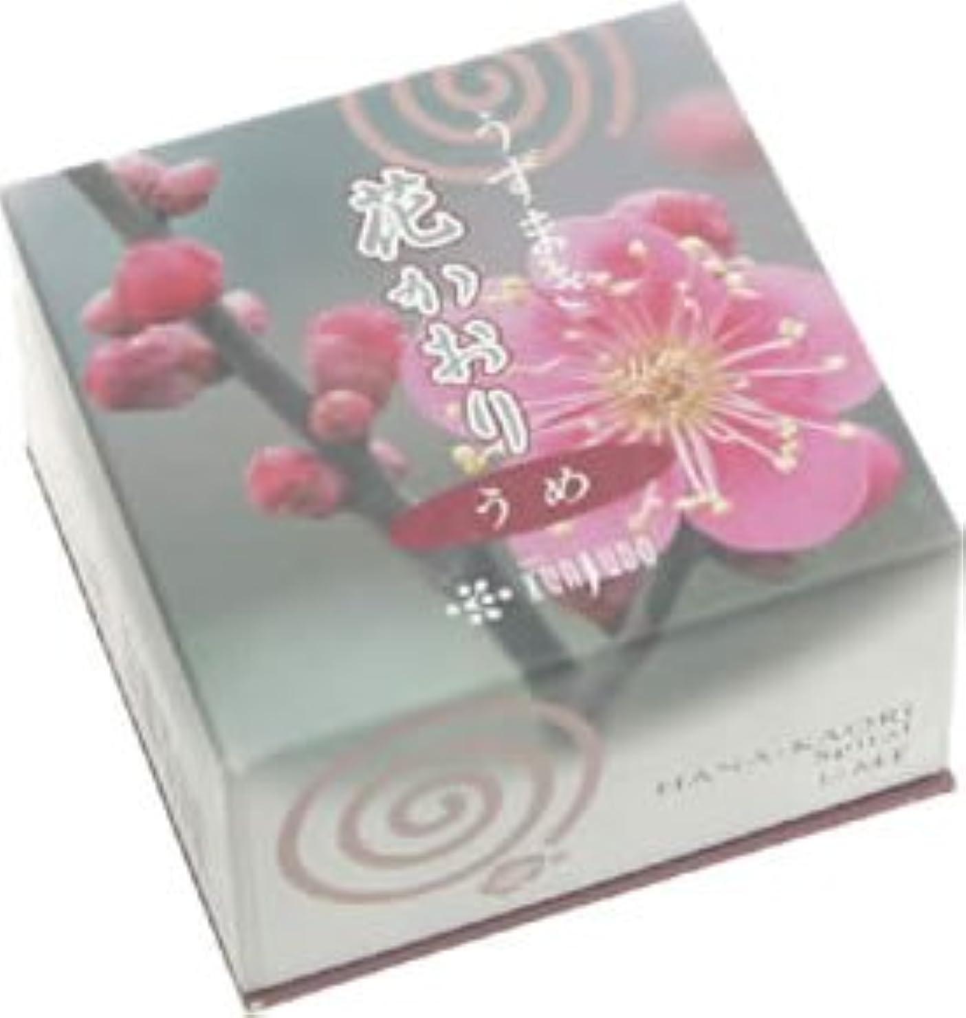 媒染剤ボール護衛花かおり(うずまき)梅 #460