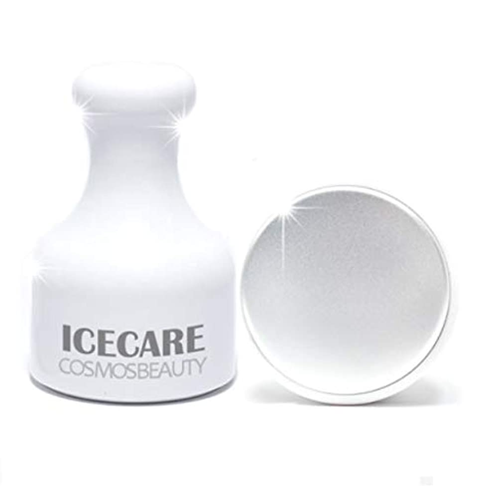 差し控えるペット国勢調査Cosmosbeauty Ice Care 毛穴ケア、冷マッサージ,フェイスクーラーアイスローラーフェイスローラー顔マッサージ機構の腫れ抜き方法毛穴縮小(海外直送品)
