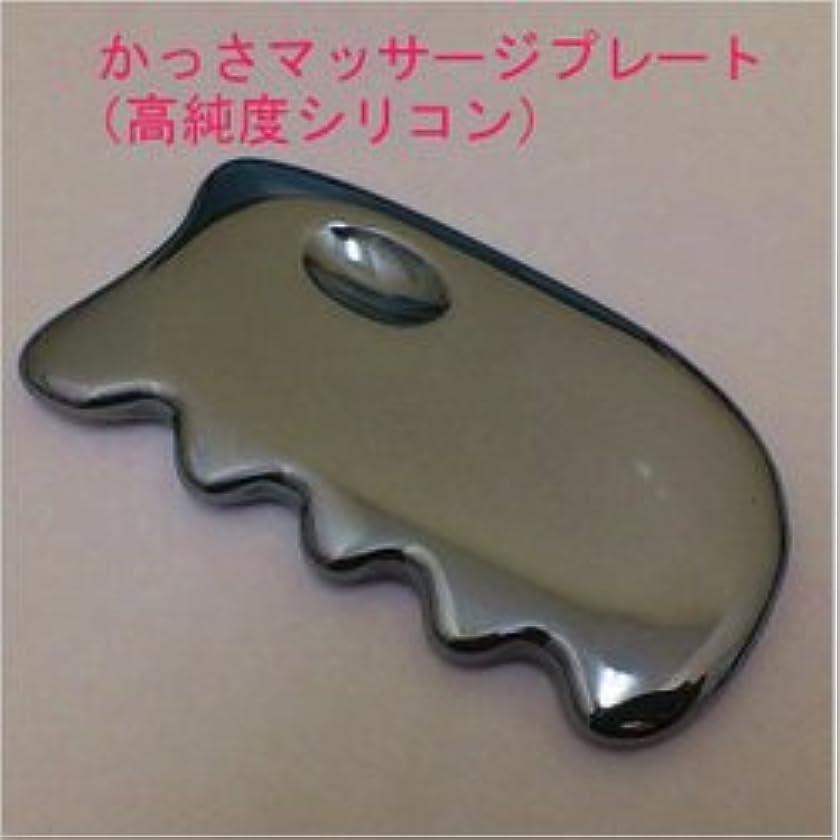 対応する風刺測定テラヘルツ かっさマッサージプレート(高純度シリコン)