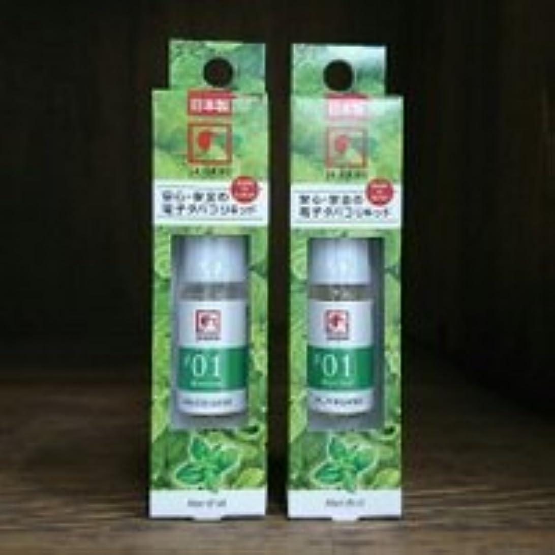 消毒するチチカカ湖暖かさ電子タバコ用リキッド j-LIQUIDメンソール10ml 2個セット