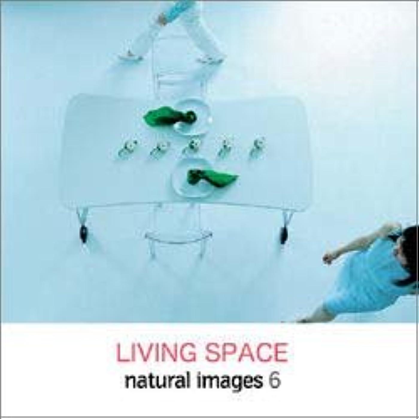雑品肉屋税金natural images Vol.6 LIVING SPACE