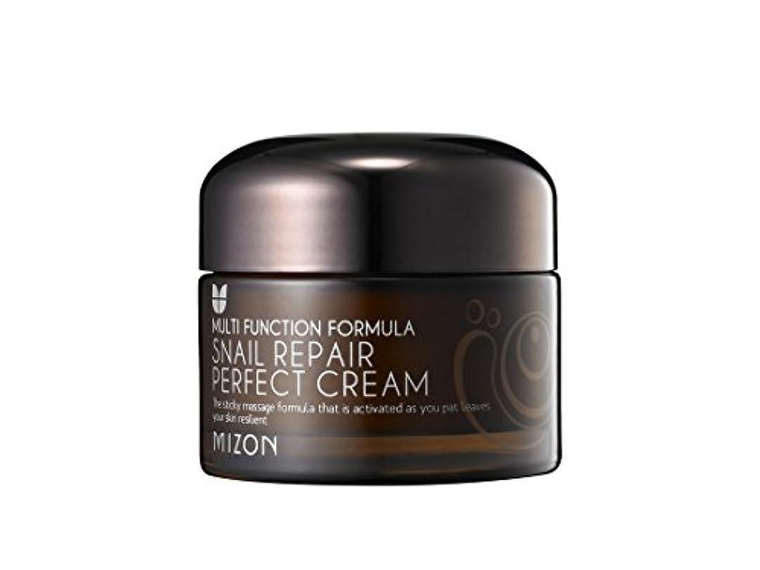 [ミズオン] MIZON スネイルリペアパーフェクトクリーム(Snail repair perfect cream) [並行輸入品]