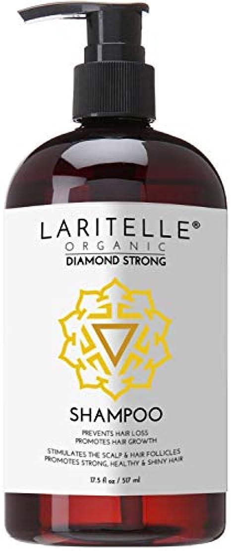 誘う学習角度Laritelle Organic Shampoo 16 oz | Hair Loss Prevention, Strengthening, Follicle Stimulating | Argan, Rosemary,...