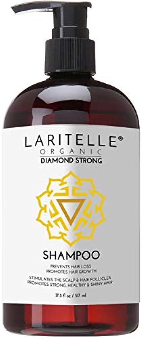 オールおなかがすいた実行Laritelle Organic Shampoo 16 oz | Hair Loss Prevention, Strengthening, Follicle Stimulating | Argan, Rosemary,...