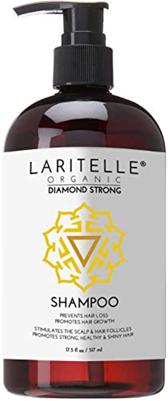 祝うストレッチ行Laritelle Organic Shampoo 16 oz | Hair Loss Prevention, Strengthening, Follicle Stimulating | Argan, Rosemary, Lemongrass, Ginger & Cedarwood | NO GMO, Sulfates, Gluten, Alcohol, Parabens, Phthalates by Laritelle