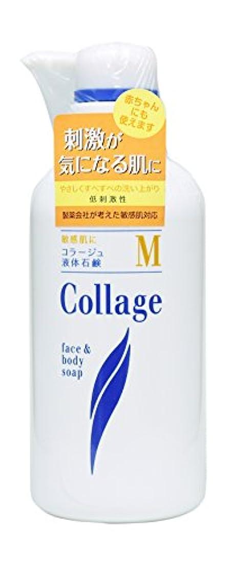 発疹パット子猫コラージュ M液体石鹸 400mL
