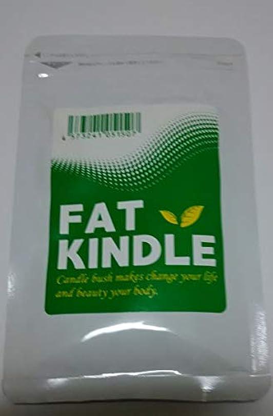 忠実ないくつかのステンレスファットキンドル FAT KINDLE 90粒 キャンドルブッシュ ダイエットサポート