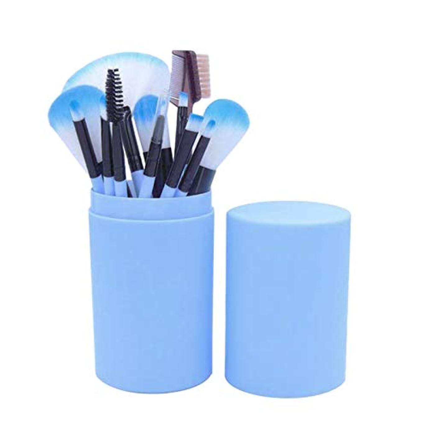 電気技師ネブ正しいSODIAL 12本の化粧ブラシのセット、化粧品、フェイスブラシのキット、ポータブルのバレル付き、初心者向けアイシャドウのブラシ、美容化粧ツール(湖の青色)