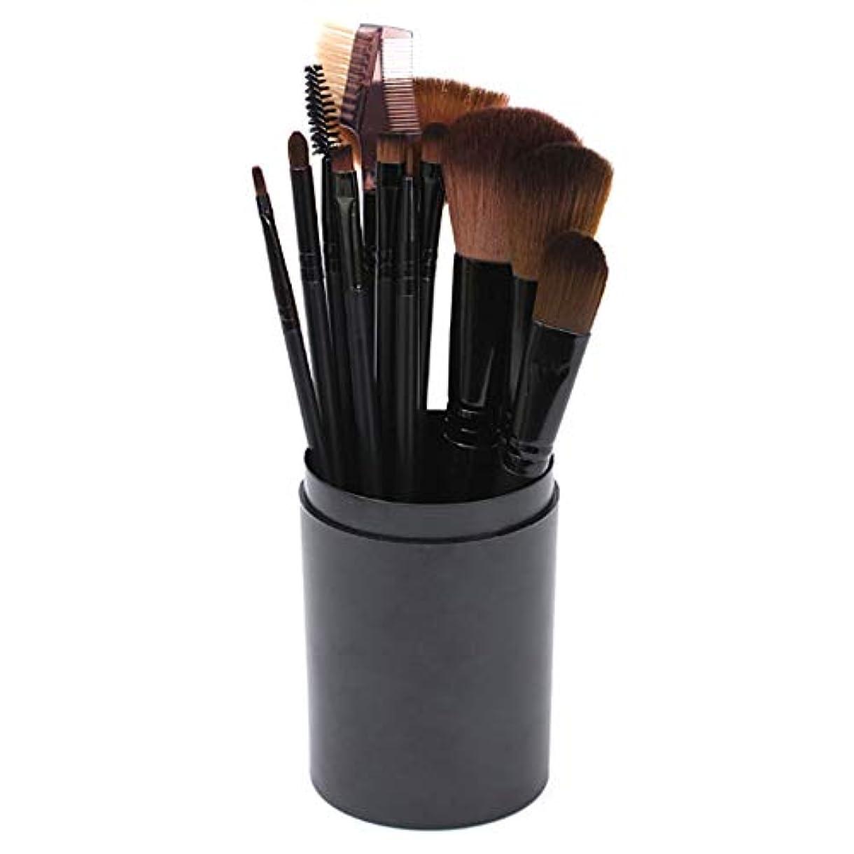 論争的調整する窒素[RADISSY] メイクブラシ 化粧筆 フェイスブラシ 12本 セット 専用 ケース 付き (ブラック)