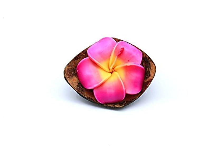 ハワイのルアウパーティーリアルココナッツクォーターシェルキャンドルホルダー花プルメイラローズ香りのキャンドルピンク