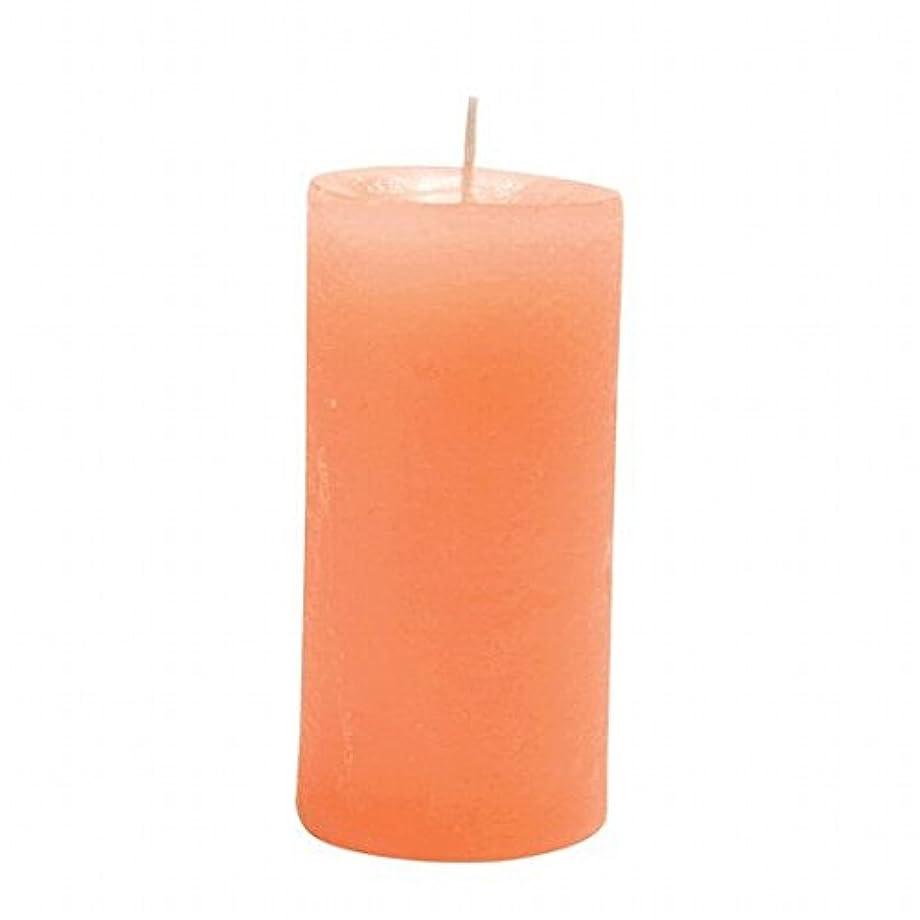 脚本家忠実なニンニクヤンキーキャンドル( YANKEE CANDLE ) ラスティクピラー50×100 「 オレンジ 」