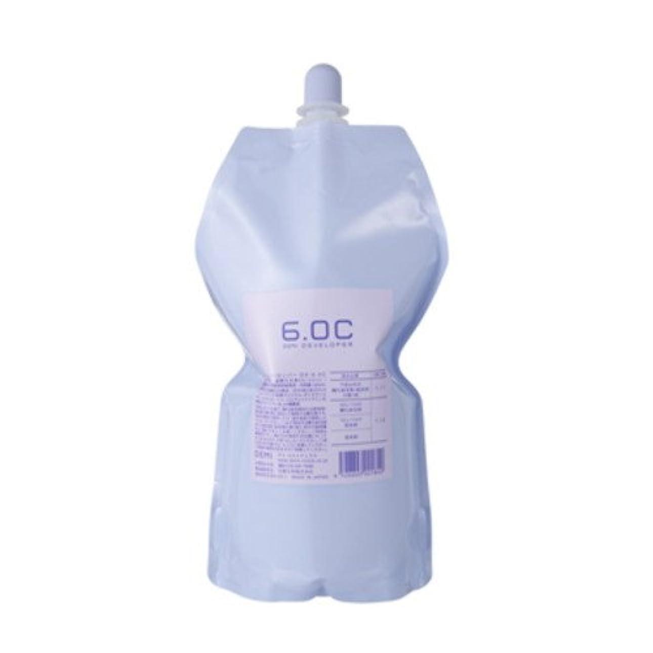 ヒョウ習熟度降臨デミ ディベロッパー オキシ 6.0%(2剤)