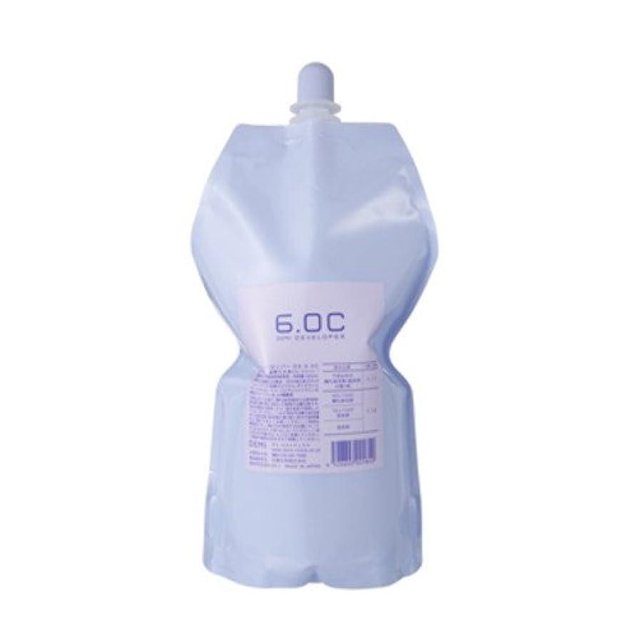 紛争宿るズームインするデミ ディベロッパー オキシ 6.0%(2剤)