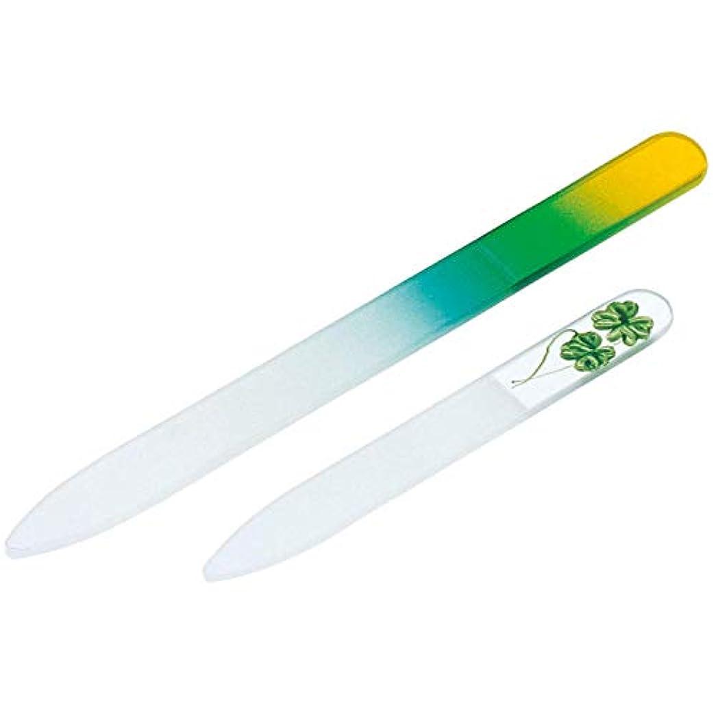 吸収するインシデント水陸両用ガラス製爪やすり 大小2個セット 水洗い可 子ども 携帯用 つめやすり