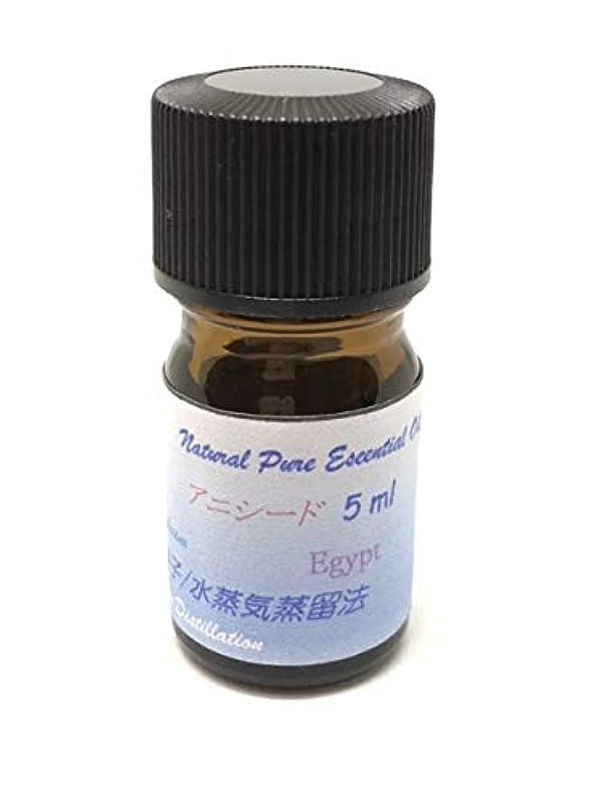 魅了する共役血まみれのアニシード ピュアエッセンシャルオイル 5ml Aniseed
