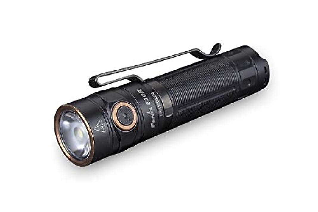 ミケランジェロ遠え適用するFENIX(フェニックス) E30R SST40 LED コンパクトフラッシュライト 明るさ最高1600ルーメン USB充電式 E30R