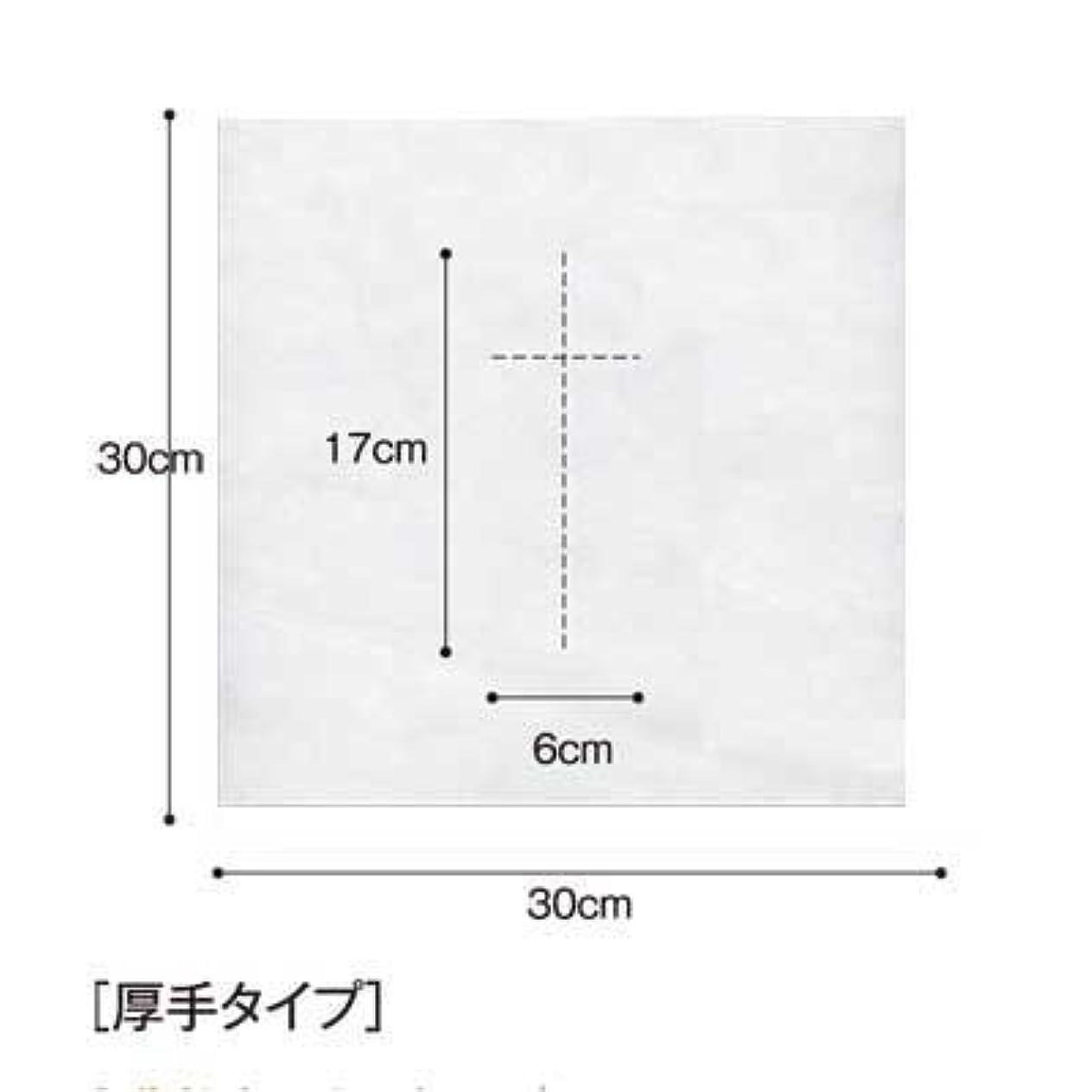 白鳥誤解する衝突する(ロータス)LOTUS 日本製 ピロカバー DX 十字カット 100枚入 業務用 マッサージ 、エステ 厚みのあるタイプ