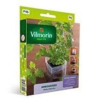 Mini jardan - Ba¡lsamo de liman - juego de iniciacian para el cultivo en interiores - semilla