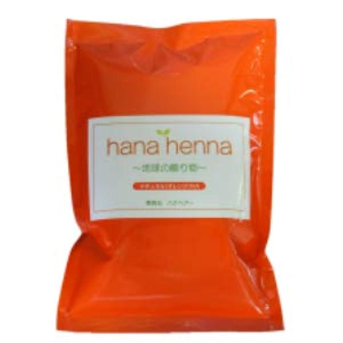 保険郡脚本hana henna ハナヘナ ナチュラル(オレンジ)100g