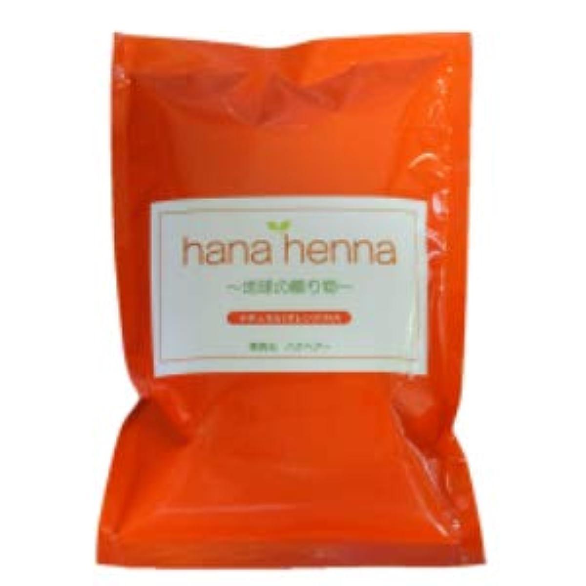 サンダル凍結記念日hana henna ハナヘナ ナチュラル(オレンジ)100g