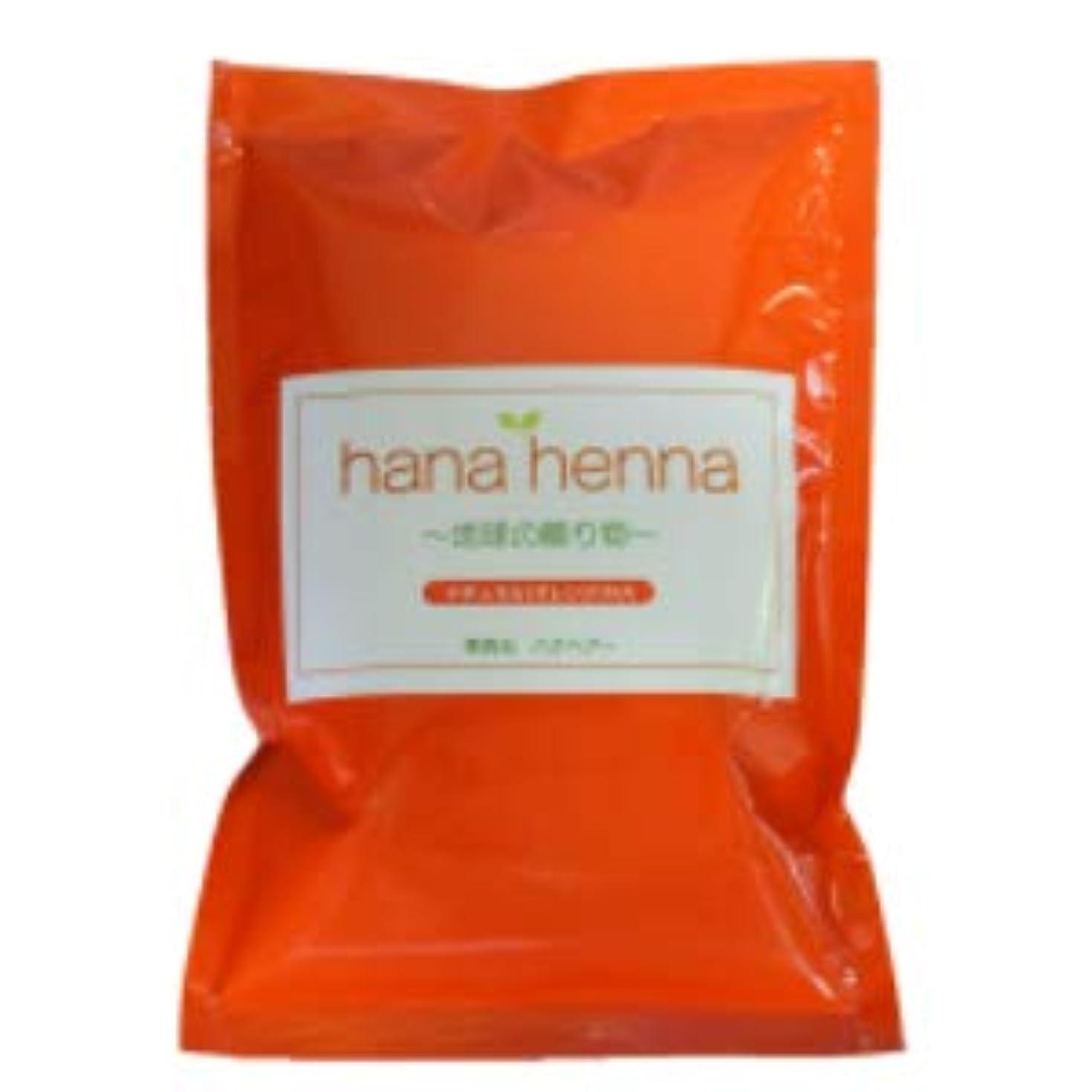 ポール公ライナーhana henna ハナヘナ ナチュラル(オレンジ)100g