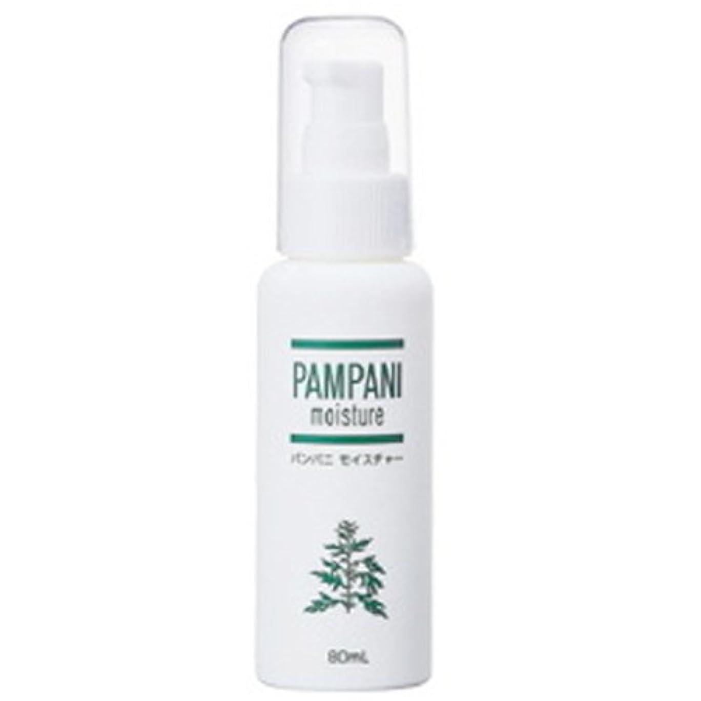 水銀の飲み込む分析パンパニ(PAMPANI) モイスチャー 80ml