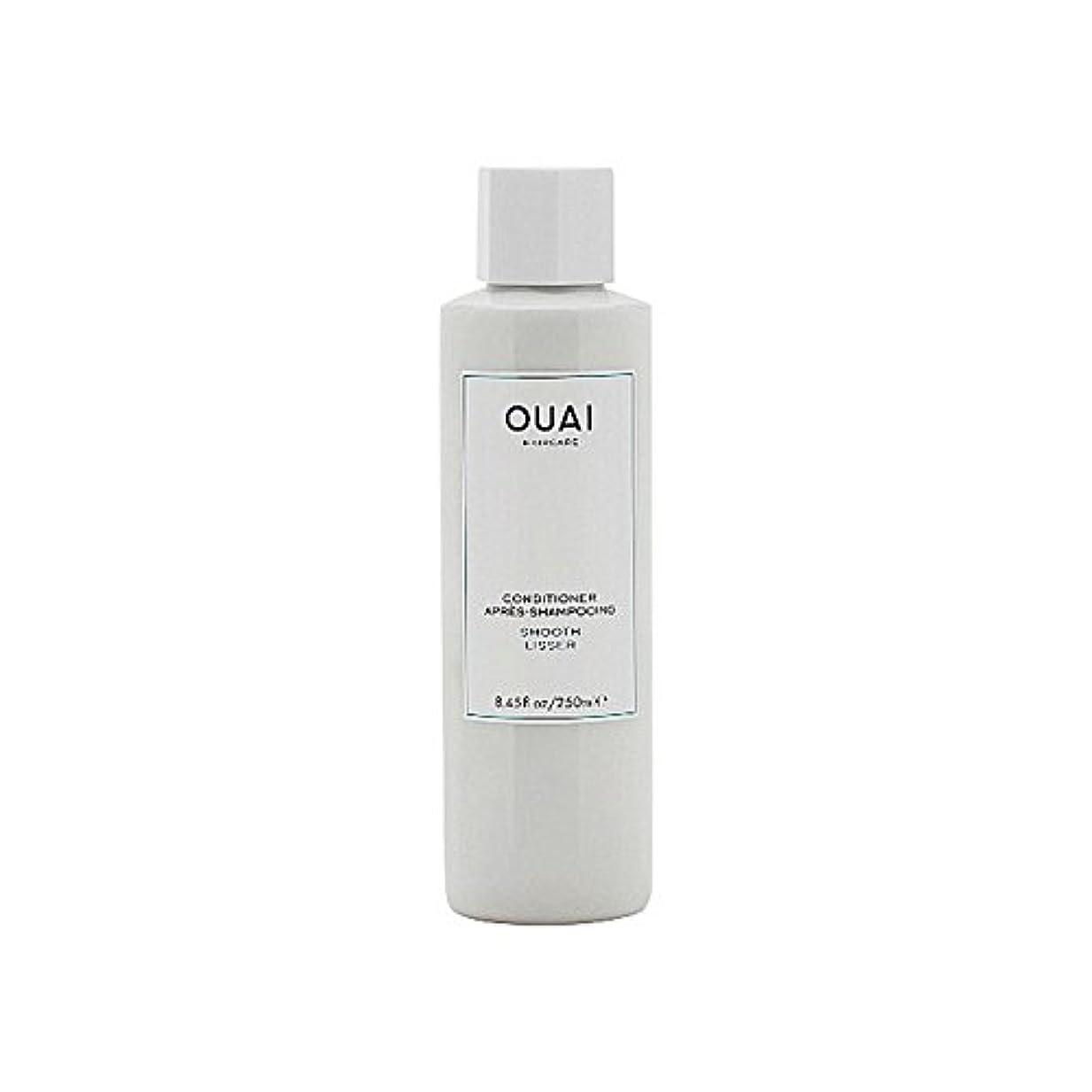 週末ばかげた化粧Ouai Smooth Conditioner 250ml - スムーズコンディショナー250 [並行輸入品]