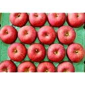 こだわりサンふじ贈答用青森りんご