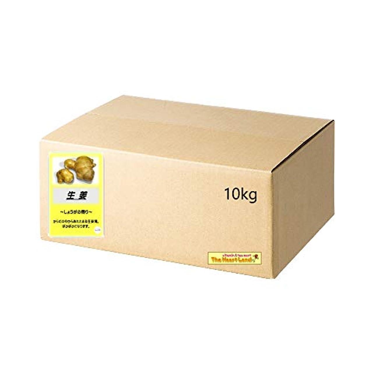 染料防ぐ弾力性のあるアサヒ入浴剤 浴用入浴化粧品 生姜 10kg