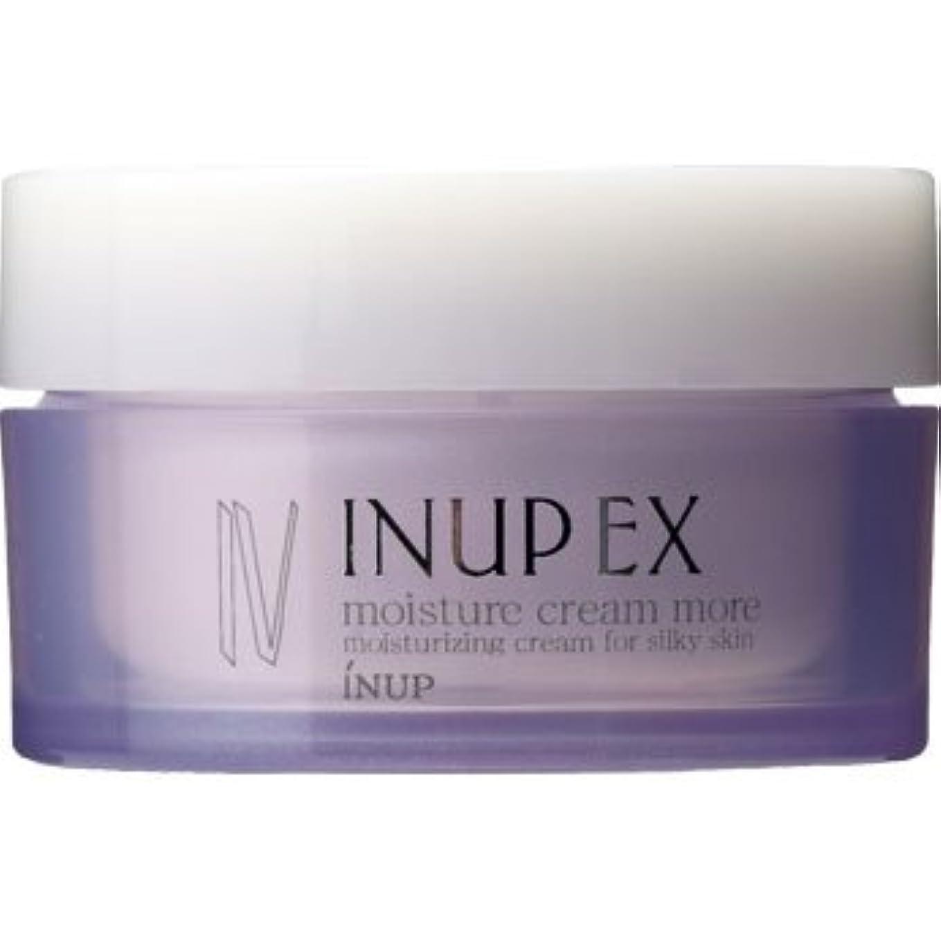 想定する代数的姉妹インナップEX 保湿クリーム (潤い効果アップ) モイスチャークリーム MD (スパチュラ付)[弱酸性] 30g