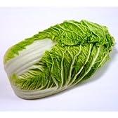 群馬県産 白菜 1玉