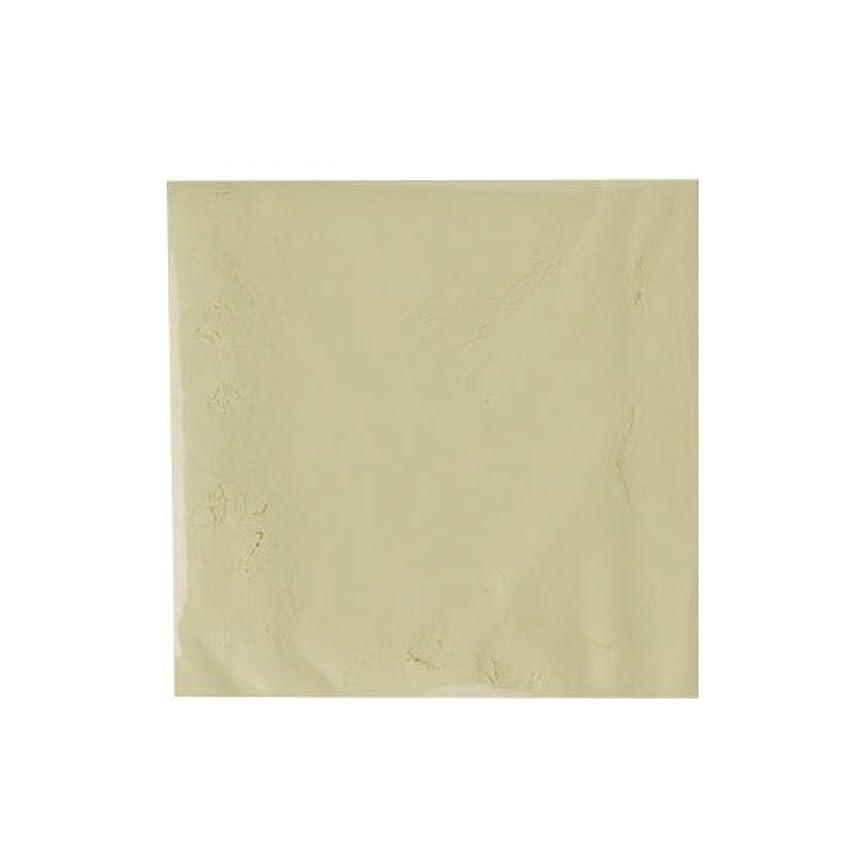 リッチラッドヤードキップリング失態ピカエース ネイル用パウダー カラーパウダー 着色顔料 #742 クリームレモン 2g