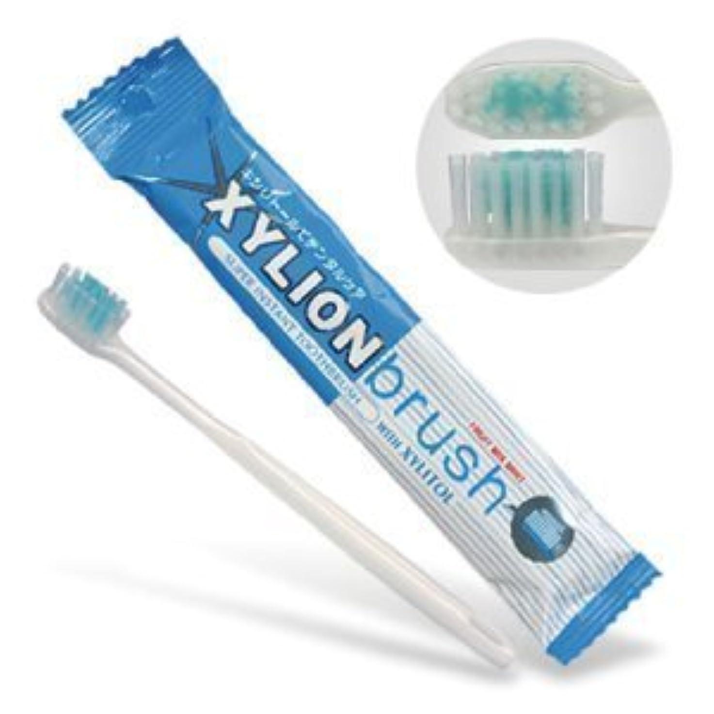 伴うスリム気絶させるキシリオンブラシ (XYLION brush) 25本