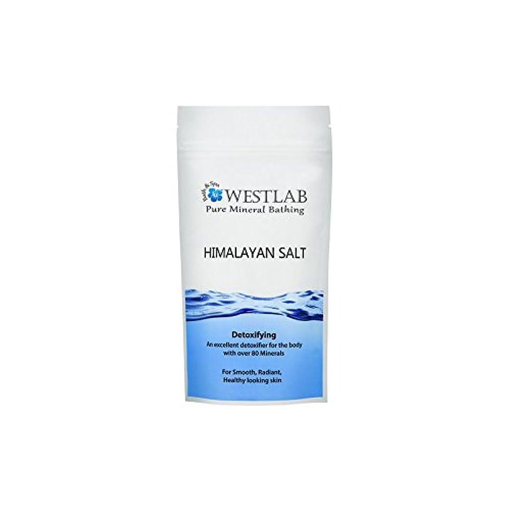 後方横にペルーヒマラヤの塩500グラム x2 - Westlab Himalayan Salt 500g (Pack of 2) [並行輸入品]