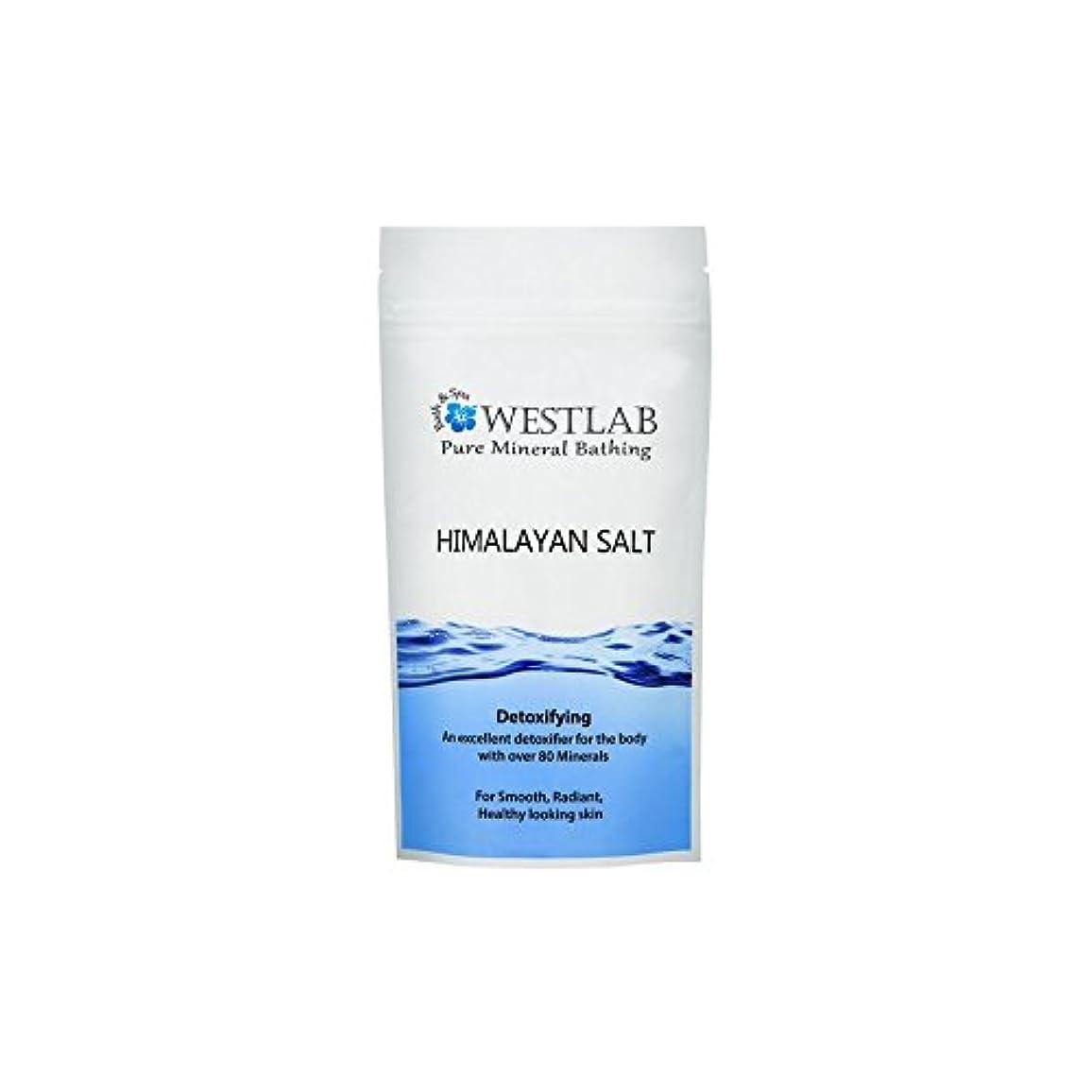 スティーブンソン領域階下ヒマラヤの塩500グラム x4 - Westlab Himalayan Salt 500g (Pack of 4) [並行輸入品]