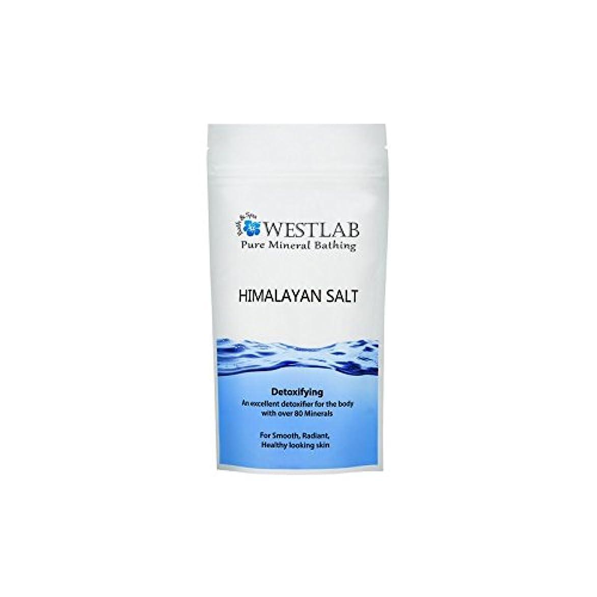ホイストスーツ行うヒマラヤの塩500グラム x4 - Westlab Himalayan Salt 500g (Pack of 4) [並行輸入品]