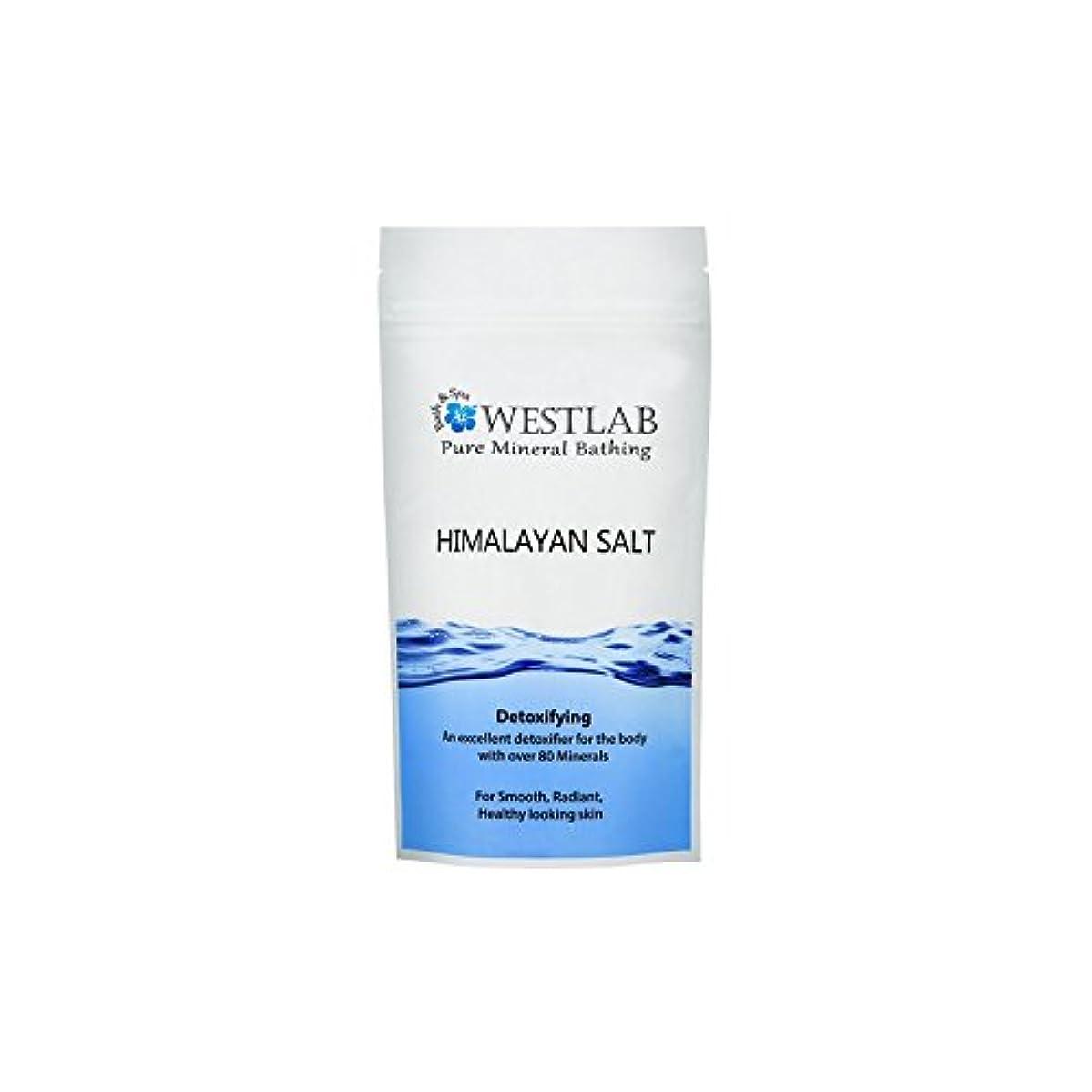 敬以来抗生物質ヒマラヤの塩500グラム x4 - Westlab Himalayan Salt 500g (Pack of 4) [並行輸入品]