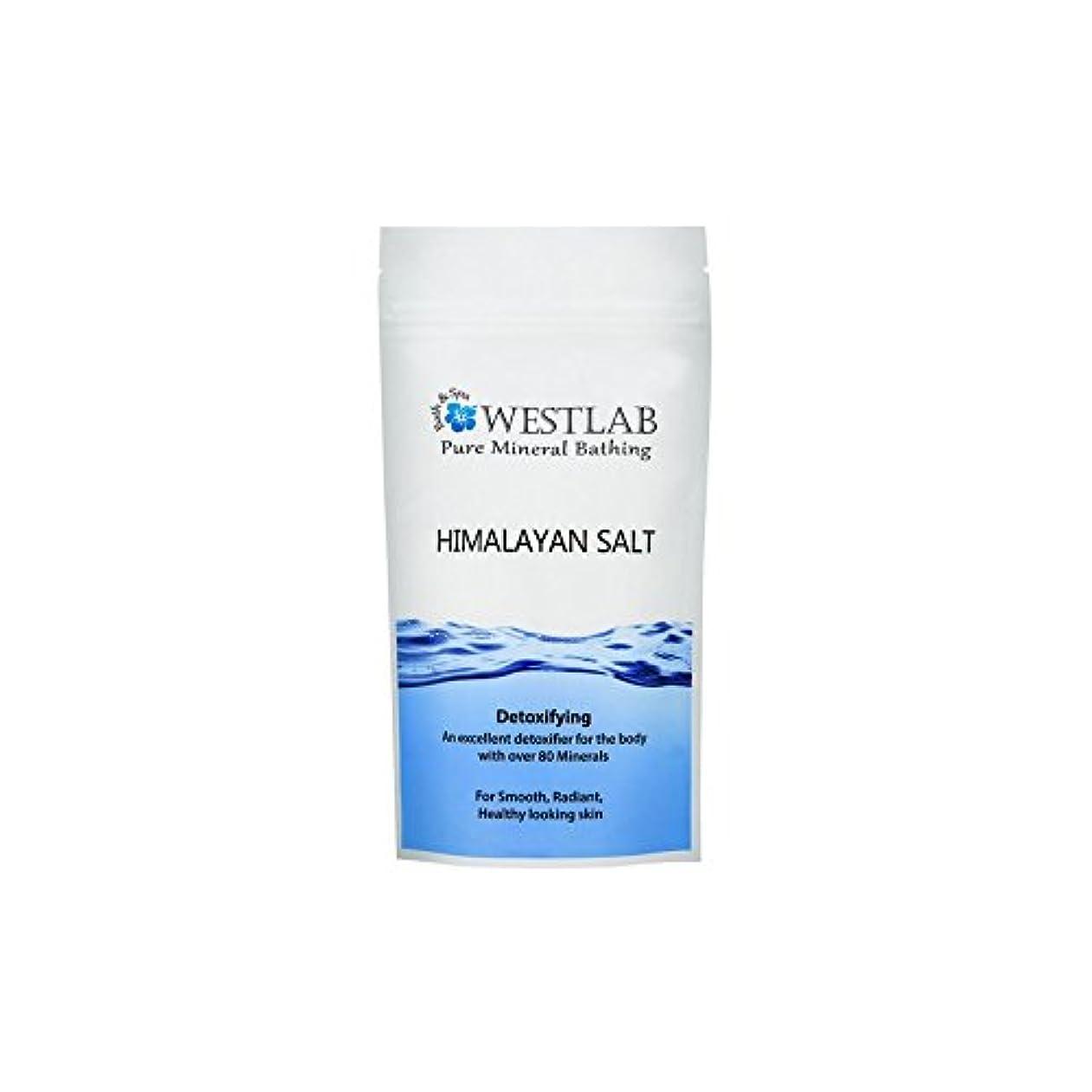 乗って離婚バンヒマラヤの塩500グラム x4 - Westlab Himalayan Salt 500g (Pack of 4) [並行輸入品]