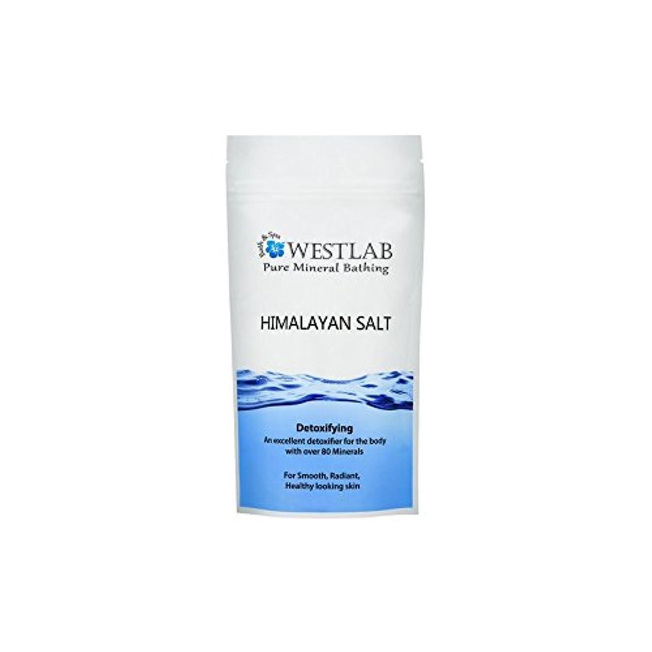 マークされた純粋な脱臼するWestlab Himalayan Salt 500g (Pack of 6) - ヒマラヤの塩500グラム x6 [並行輸入品]