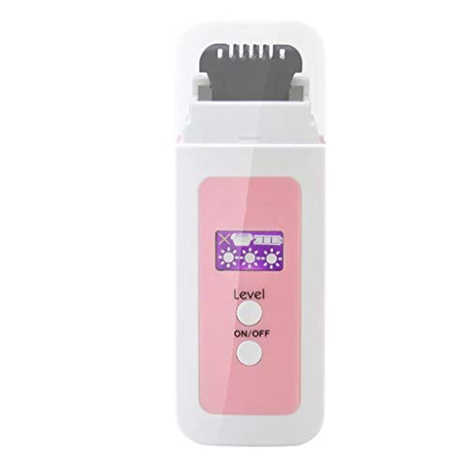 やさしいトランク賄賂女性の電気脱毛器、ポータブル充電式痛みのない熱脱毛ミニは、脇の下の余分な髪と体の下の余分な髪を削除します (Color : Pink)